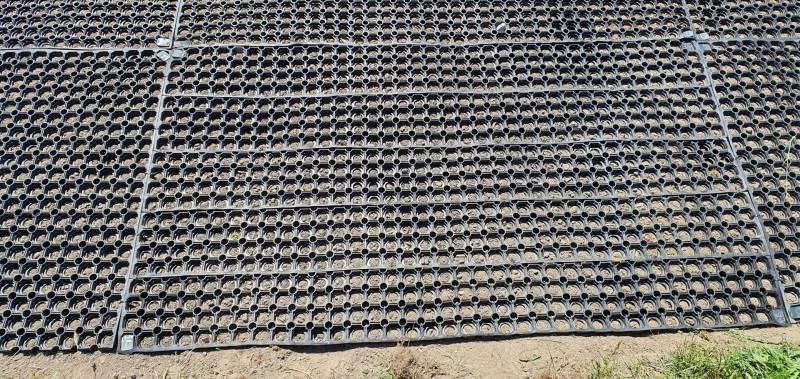 plac-zabaw-z-silownia-zewnetrzna-w-piotrkowie-trybunalskim-230m2-mat-przerostowych-flexmat-3